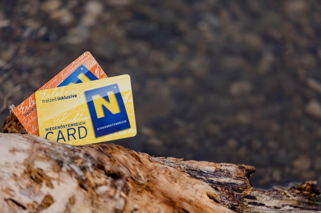 tips_noe-card